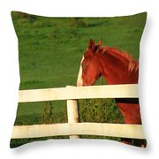 Horse And White Fence Throw Pillow