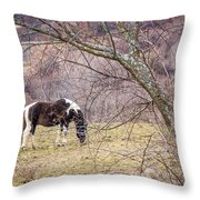 Horse And Winter Berries Throw Pillow