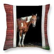 Horse - Barn Door Throw Pillow