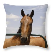 Horse Beauty Throw Pillow