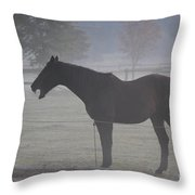 Horse Body Language  Throw Pillow