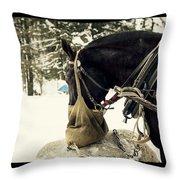 Horse Cinema Style Throw Pillow