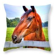 Horse Closeup Throw Pillow