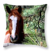 Horse Country Throw Pillow