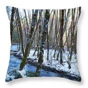 Horse Creek No. 2 Throw Pillow