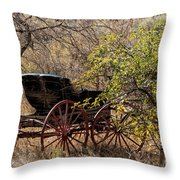 Horse-drawn Buggy Throw Pillow by Kathleen Bishop