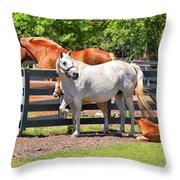 Horse Family Throw Pillow