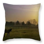 Horse Farm Sunrise Throw Pillow