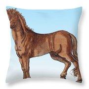 Horse Historiae Animalium  Throw Pillow