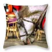 Horse In Cracow Throw Pillow