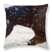 Horse In Snow   #5425 Throw Pillow