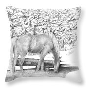 Horse In Snow Throw Pillow
