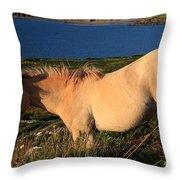 Horse In Wildflower Landscape Throw Pillow