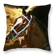 Horse Last Memories Throw Pillow