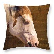 Horse Nap Throw Pillow