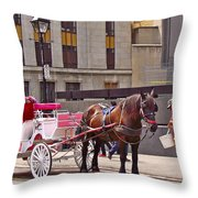 Horse Needs Water In Old Montreal-quebec-canada Throw Pillow