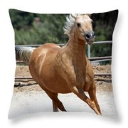 Horse On The Run Throw Pillow