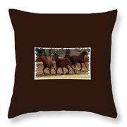 Horse Play Painting  Throw Pillow