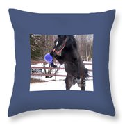 Horse Playing Ball Throw Pillow