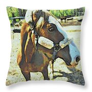 Horse Point Of View Throw Pillow
