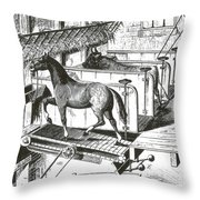 Horse Powered Stall Cleaner, 1880 Throw Pillow