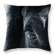 Horse Reflection Throw Pillow