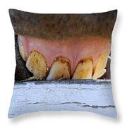Horse Smile Throw Pillow