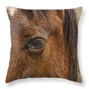Horse Tear Throw Pillow