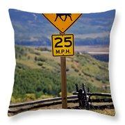 Horseback Riding Sign Throw Pillow