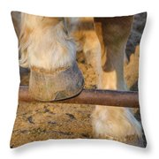 Horses 4 Throw Pillow