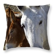 Horses And Mules   #0757 Throw Pillow