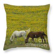 Horses And Wildflowers   #8511 Throw Pillow