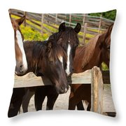 Horses Behind A Fence Throw Pillow
