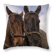 Horses  Belonging To Chagras Ecuador Throw Pillow