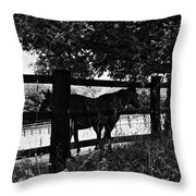 Horses By The Fence Throw Pillow