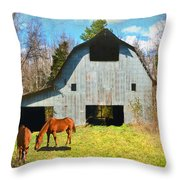 Horses Call This Old Barn Home Throw Pillow