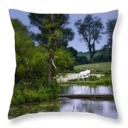 Horses Grazing At Water's Edge Throw Pillow