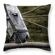 Horse's Head Throw Pillow