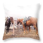 Horses In The Mist - Haleakala Throw Pillow