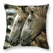 Horses Looking Through The Fence Throw Pillow