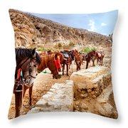 Horses Of Petra Throw Pillow