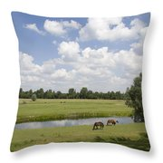 horseshoe shaped moat of Fort Elden Westerveld in park in Arnhem Netherlands Throw Pillow