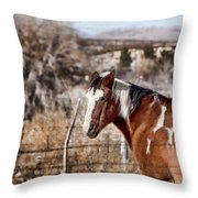 Horsing About V3 Throw Pillow
