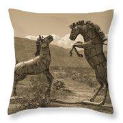 Horsing Around In Borrego Throw Pillow