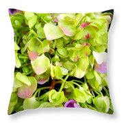 Hortensia With Touch Of Pink Throw Pillow