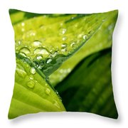 Hosta Droplets I Throw Pillow