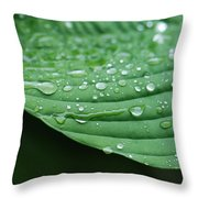 Hosta Leaves Throw Pillow
