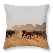 Hot Dry And Dusty Throw Pillow