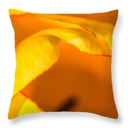 Hot Edges Throw Pillow