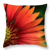 Hot Flames Throw Pillow